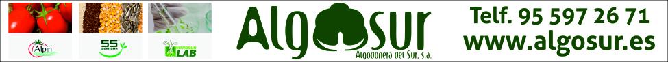 Algosur