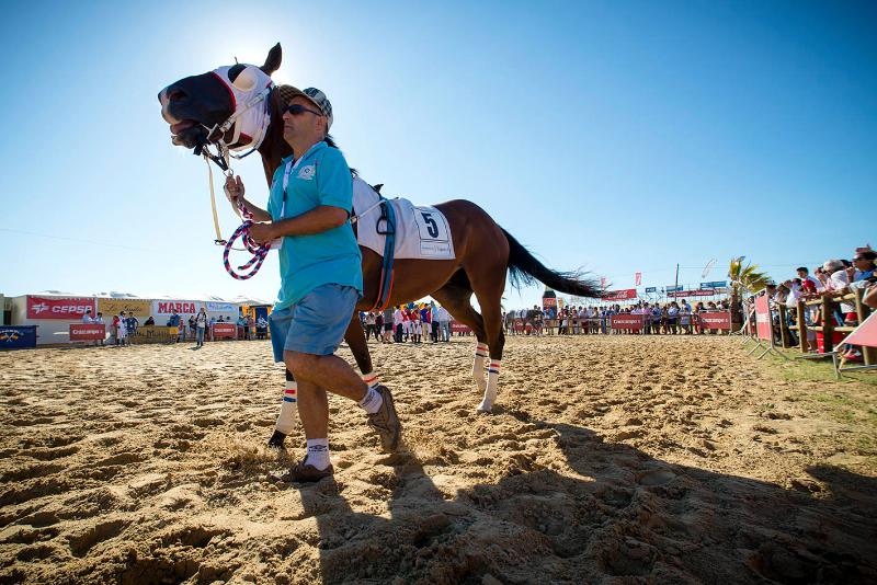 carreras-caballos-sanlucar-2014