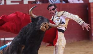 Padilla, toreando