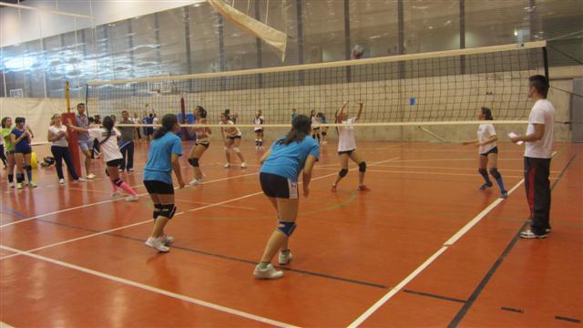 Deportes Diferentes Deportes: La Final De Los Municipales De Voleibol, En El Palacio De