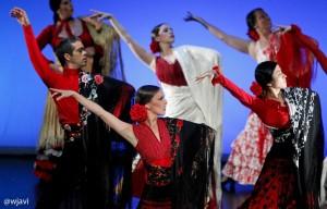 canalla flamenco