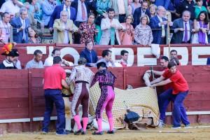 toros caballos 2017