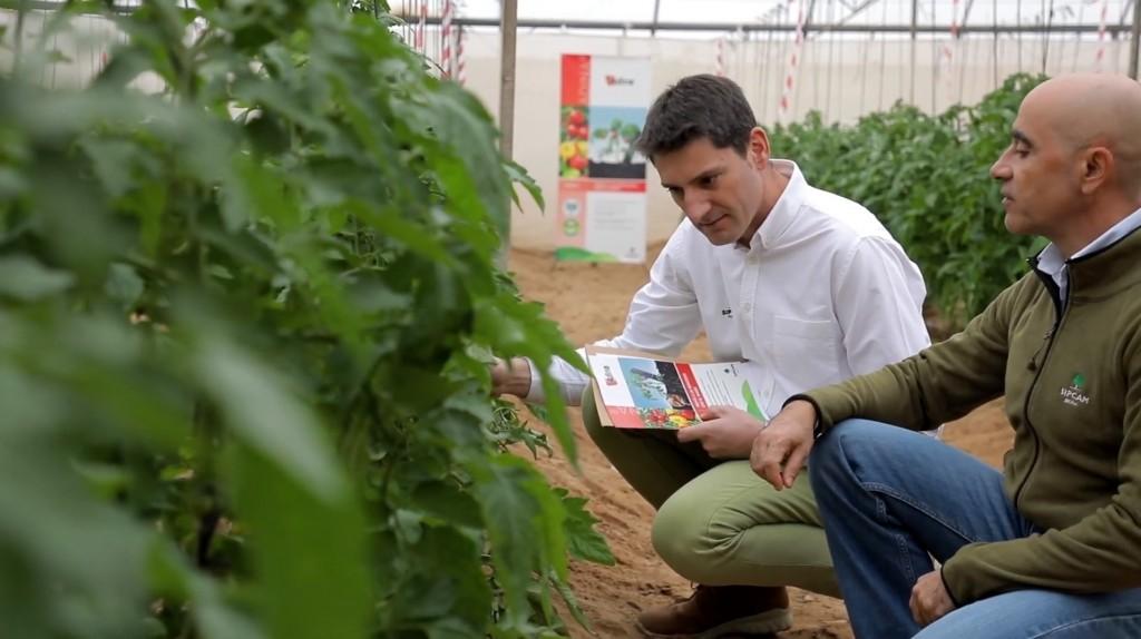 Azadiractin: La materia activa pionera en bioprotección de cultivos hortícolas, de aniversario